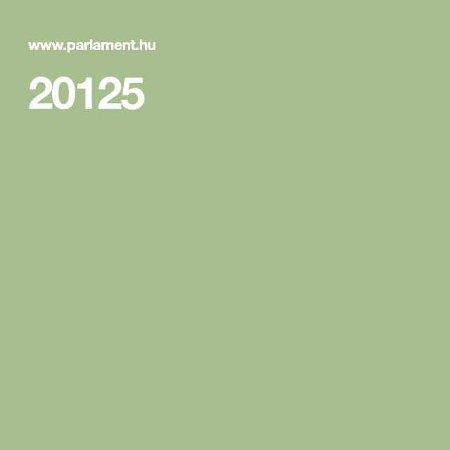 20125