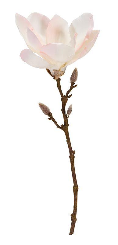 Magnolia tak 101: leuk te combineren met de 101 vazen. Verkrijgbaar in lila, roze en wit #kunstbloemen #101woonideeen #leenbakker
