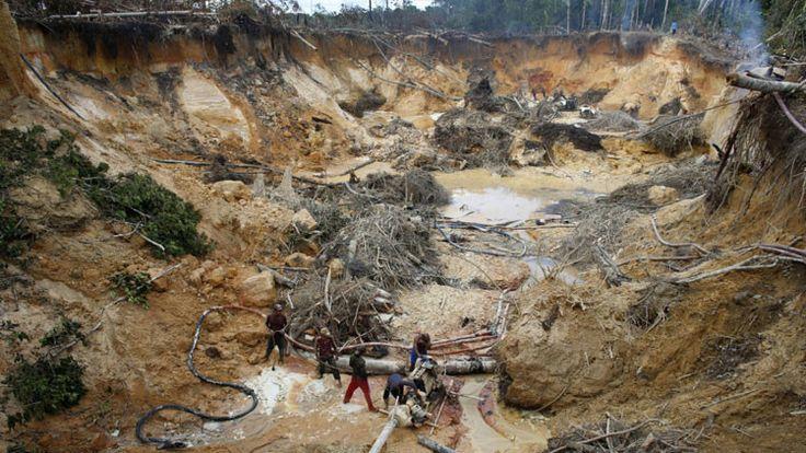 Así están dejando nuestras reselvas forestales los delincuentes buscadores de oro