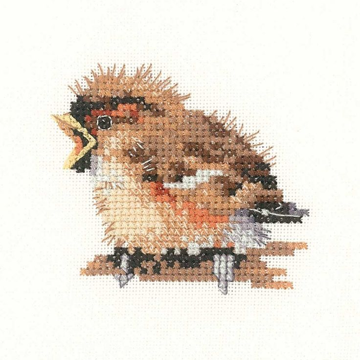 Sparrow | Heritage Crafts Counted Cross Stitch Kit