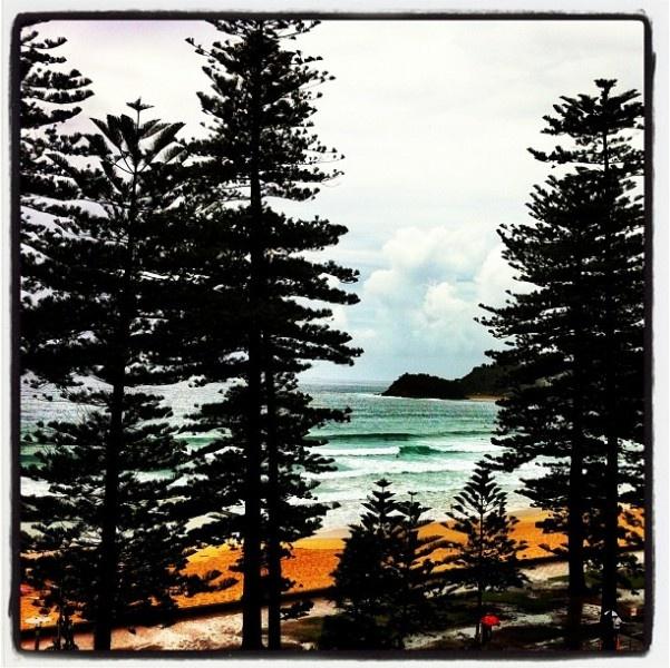 Manly Beach, #Sydney. Book Sydney flights here http://www.globehunters.com/Flights/Sydney-Flights.htm