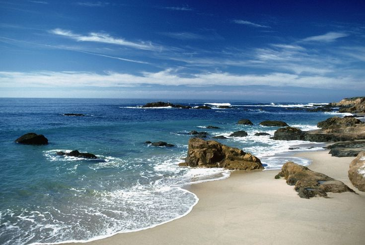 19 best blog posts images on pinterest peace room and for Deep sea fishing half moon bay