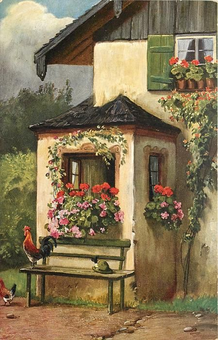 rooster stands on bench, green hat next to him, flowers in pots & window boxes under windows