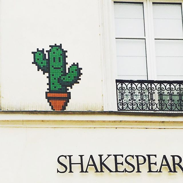 Cute cactus on the wall #cactus #paris #shakespearandcompany #tiles #building #france #cafe #cute #smile #wall