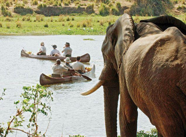 Lower Zambezi National Park - Chongwe River Camp #Zambia