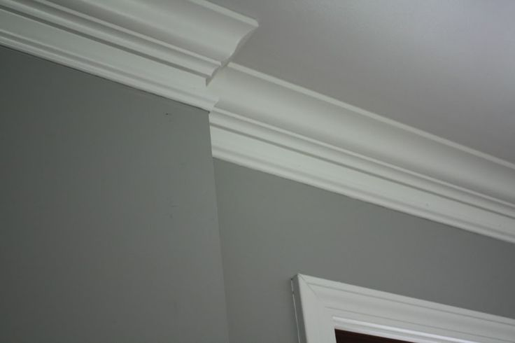 Grey Plaster Paint With White Crown Molding