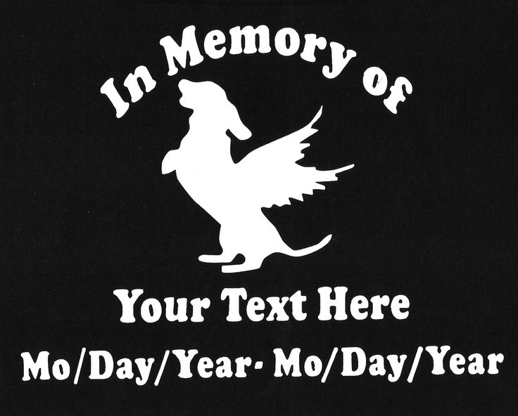 Best Memory Of Images On Pinterest Car Window Decals Stickers - Window decals in memory of