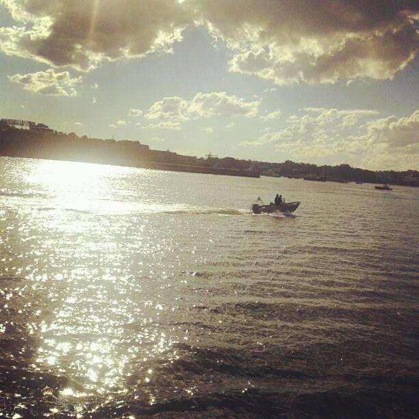How beautiful is Balmain East?