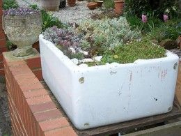 Miniature Garden: How to Plant Trough and Sink Gardens?
