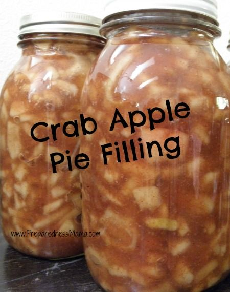 Crab Apple Crazy - A Collection of Recipes | PreparednessMama