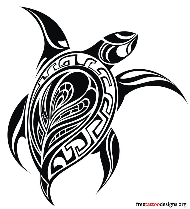 Symbols of immortality. They are viewed as symbols of fertility and creation. Their protective shell is associated with strength, security and stability. Their ability to travel thousands of miles is associated with endurance and perseverance. The sea turtle's ability to return home connects them with guidance, good luck and faithfulness.