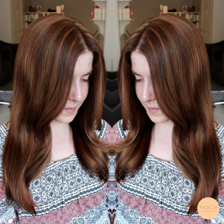 35 best 3a brown varm ocheller naturlig brun hrfrg warm brun hrfrg med slingor och varma skiftningar rich brown hair color brunette with highlights and pmusecretfo Image collections