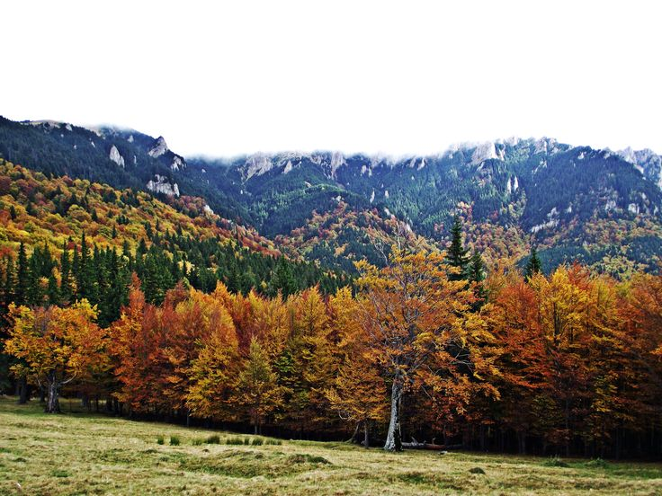 A few reasons why YOU SHOULD NOT MISS the autumn in Romania