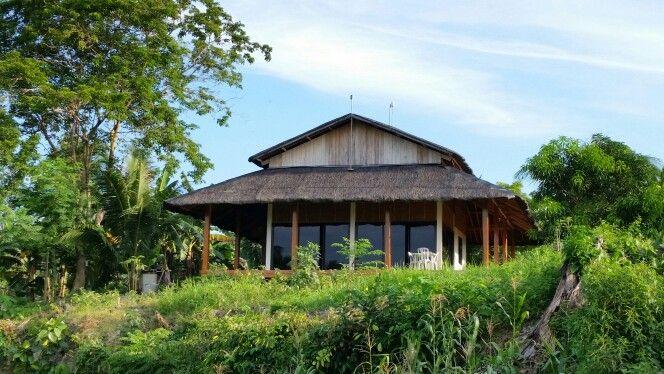 My Tea house