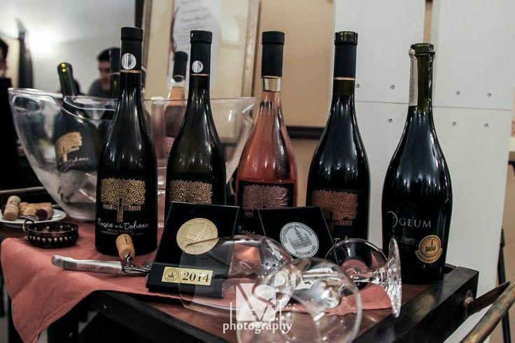 Moșia de la Tohani wine tasting