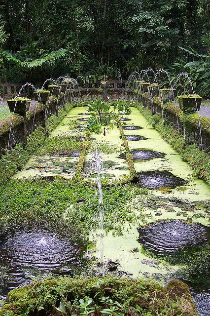 The rainforest gradually reclaims what is left of Paronella Park in Far North Queensland Australia - a mansion built by a Spanish migrant for his bride and abandoned for years. paronella park fountain By bookbirdviv