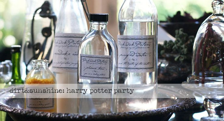 Great potions class ideas for Harry Potter Birthday party.