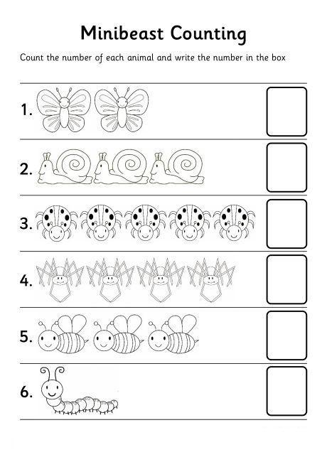 bugs count number worksheet: