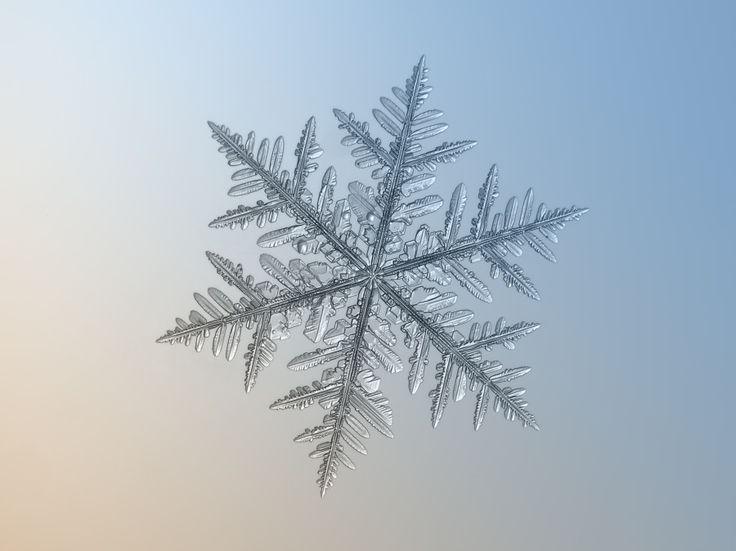 Des macros de flocons de neige flocon neige 14 900x674