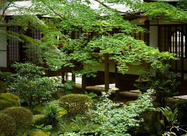 Sanzen-in, Kyoto , Japan