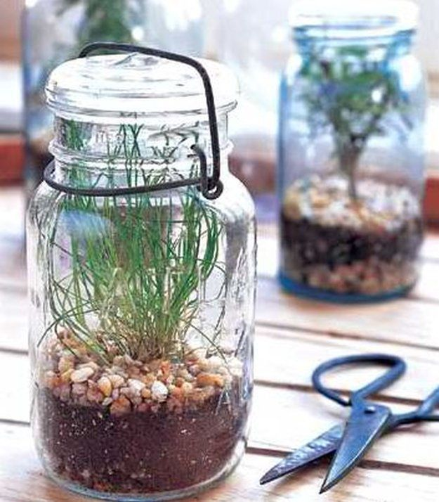 Vintage Mason Jar Terrarium | 14 DIY Plant Terrarium Ideas | Mini Terrariums You Can Make Yourself see more at http://diyready.com/14-diy-plant-terrarium-ideas-mini-terrariums-you-can-make-yourself