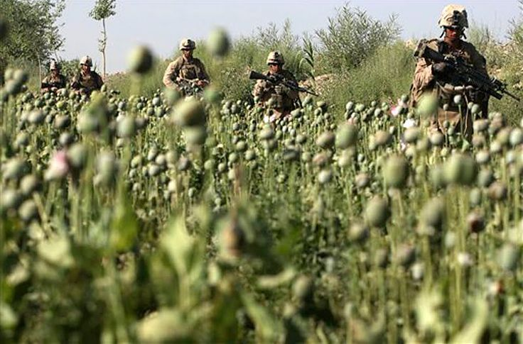 'OPIUM' REAL REASON FOR AFGHANISTAN WAR: Why Pat Tillman Was Killed / CIA Suiciding US Soldiers Overseas For Bankers