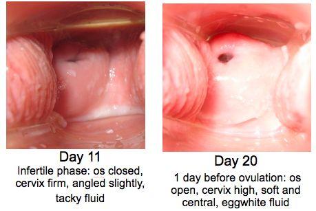 explore article your spot what cervical orgasm