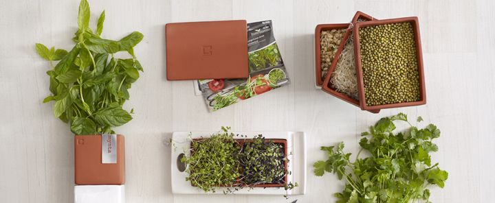 Some of the Kitchen Farming products from Cult Design Sweden. Grow your own sprouts and micro greens.  Contact me at info@delamarieinteriors.com to find out more or to purchase Cult Design Sweden items. www.delamarieinteriors.com