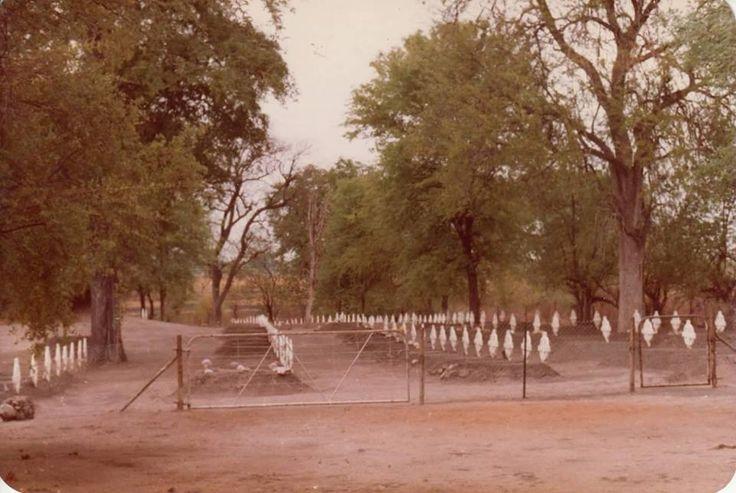 Buffalo grave yard then