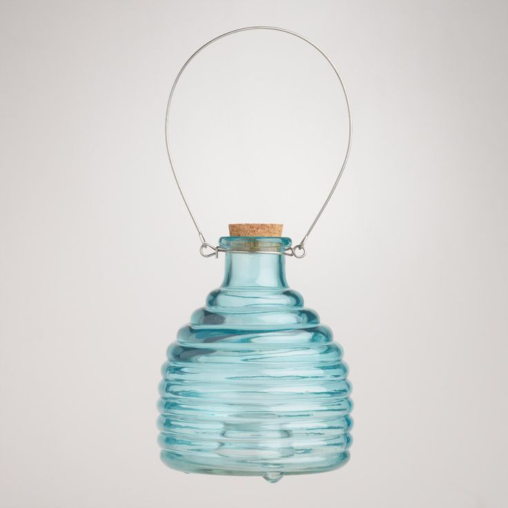 Glass Wasp Catcher, Blue | World Market