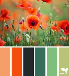 Szilvi foltvarró blogja: Színes kérdések - Hogyan válasszunk színeket egy p...