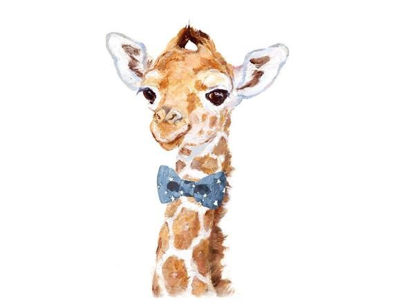 Giraffe Pictures To Print