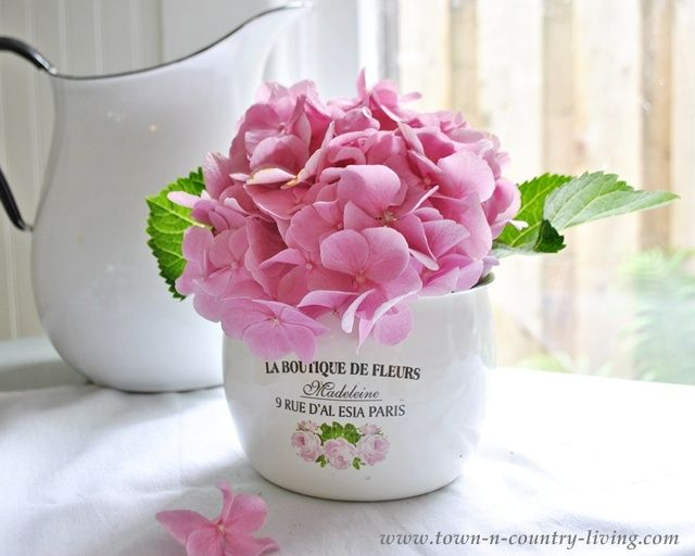 Pink Hydrangea In A French Enamel Pot   Town And Country Living Blog