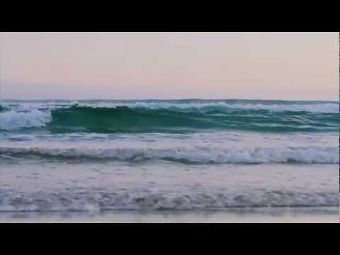 Dunedin Light - Derek Morrison