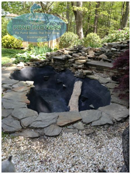 50 best images about fish pond repair on pinterest read for Fish pond repair