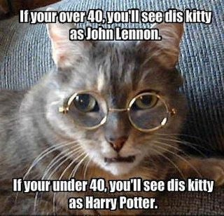 Harry VS John: Friday Funnies, Glasses, Funnies Cats, Funnies Animal Pictures, Harry Potter, Funnies Animal Pics, Funnies Sayings, John Lennon