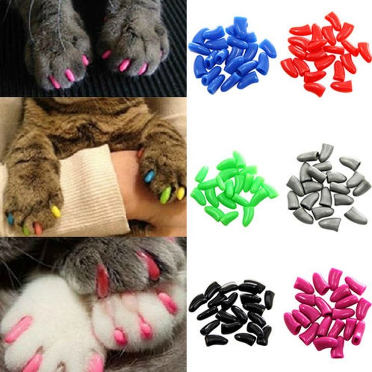 Hot 20PCS Dog Cat Nail Covers Pet Claw Paws Caps Adhesive Glue Animal Protection #clothing,#shoes,#jewelry,#women,#men,#hats,#watches,#belts,#fashion,#style