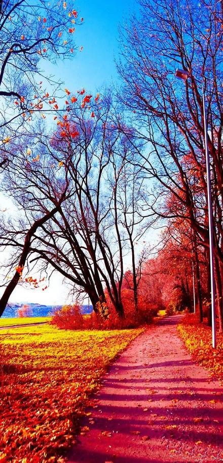 couleurs et sens..............................^.^ facebook Hélène Poncet