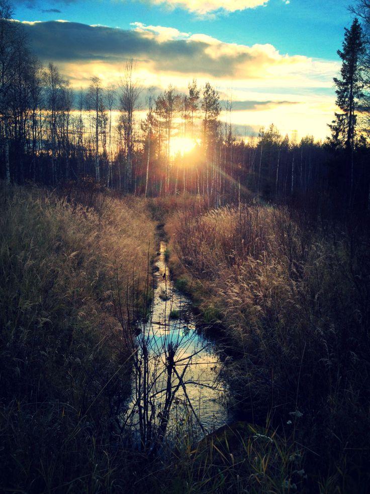 Autumnday in Lapland