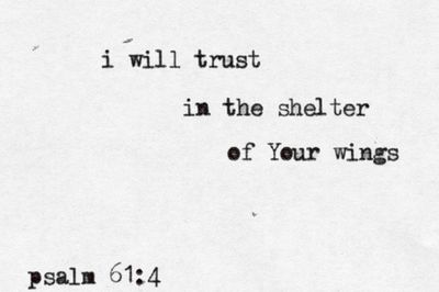 i will trust in the shelter of Your wings