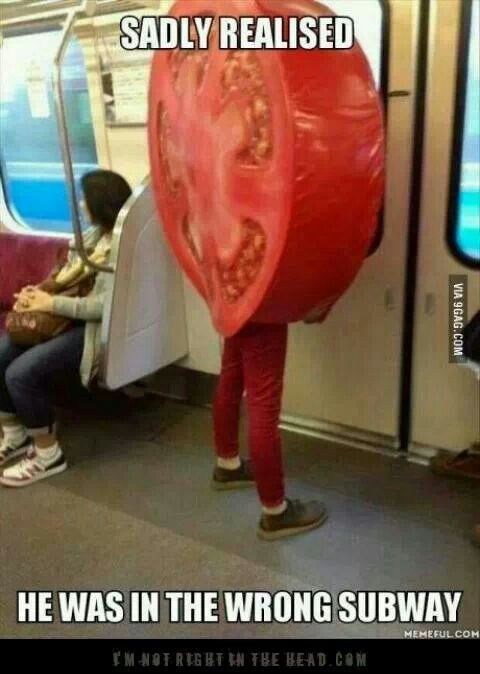Poor guy.... he cant re unite with meat and cheese and lettuce! :(