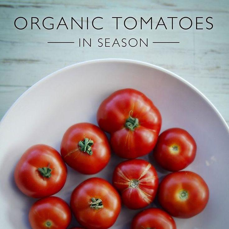 DECEMBER 2015 – Australian Organic tomatoes in season now... Find your nearest Organic supplier on http://www.OrganicShopper.com.au