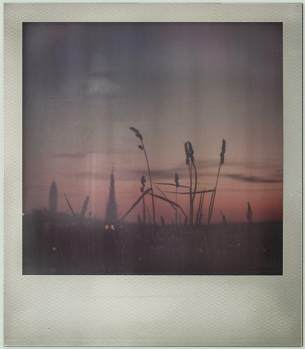 love Polaroid photos