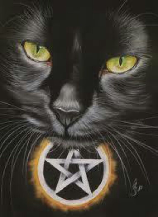 Katzen Und Kätzchen, Hexen, Sprüche Und Zitate, Bilder, Schwarze Katzen,  Schwarze Tiere, Magie, Katzen Kunst, Schönen Katzen