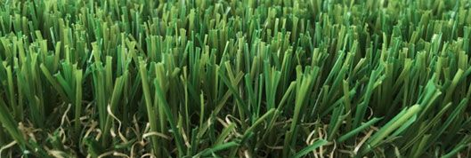 canarvon summer wa turf gurus Perth are leading Manufacturers, Wholesalers and Installers of premium quality artificial grass. Buy factory direct from us at wholesale prices. CALL NOW FOR A FREE QUOTE - 0426046485