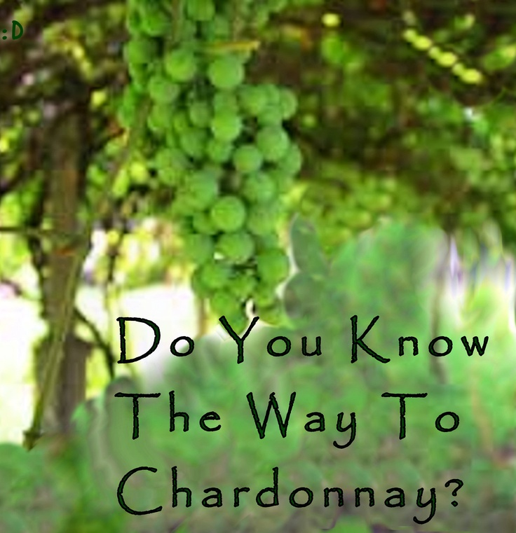 Do you know the way to chardonnay?