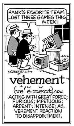 Image result for vehement