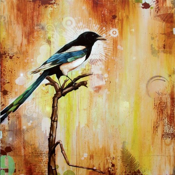 Blaine Fontana. Scribbles Magpie. I love his work with birds, animals. Texture, Color, & Imagery.