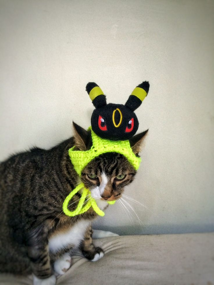 Cat Dog Costume Hat with Black Pokemon Yellow Crochet Unique Handmade Cat Dog Pet Hat by DesignsbyPolina on Etsy https://www.etsy.com/listing/471739187/cat-dog-costume-hat-with-black-pokemon
