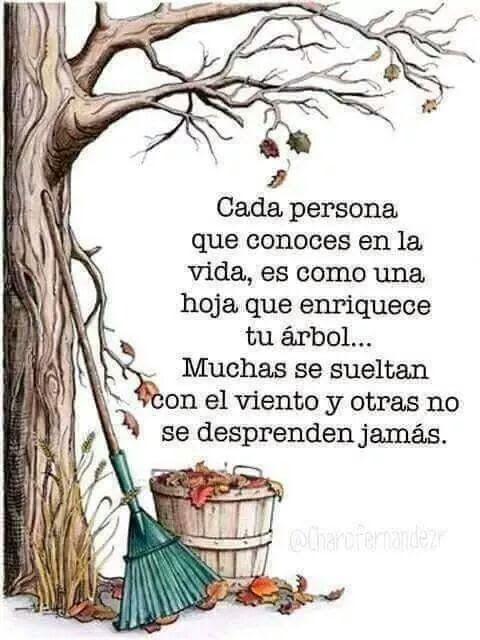 - Amelia Centeno - Google+